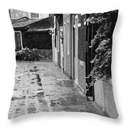 The Abandoned Umbrella Throw Pillow