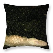 The Albino Throw Pillow