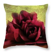 The Artists Palette Throw Pillow
