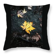 The Autumn Leaf Throw Pillow