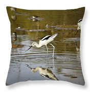 The Avocets  Throw Pillow