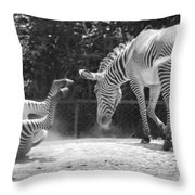 The Back End In Black And White Throw Pillow