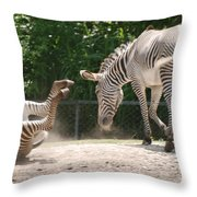 The Back End Throw Pillow