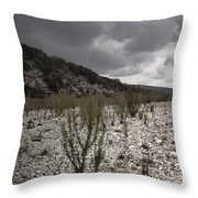 The Bank Of The Nueces River Throw Pillow