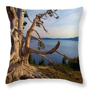 The Banks Of Crater Lake Throw Pillow