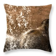 The Bath Day Throw Pillow