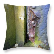 The Battle Lost  Throw Pillow
