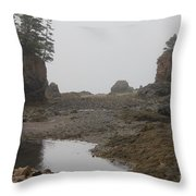 The Bay Of Fundy Throw Pillow