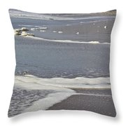 The Beach In January Throw Pillow