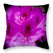 The Beautiful Rhododendron Throw Pillow