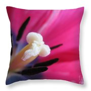 The Beauty From Inside Throw Pillow