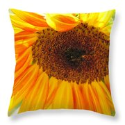 The Beauty Of A Sunflower Throw Pillow