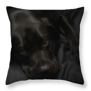 The Beauty Of Black Throw Pillow