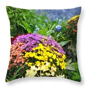 The Beauty Of Fall Bofwc Throw Pillow