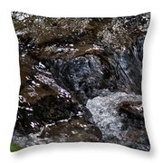 The Beauty Of Movement Throw Pillow