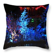 The Beauty Of Winter II Throw Pillow