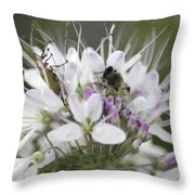 The Beetle And The Bee Throw Pillow