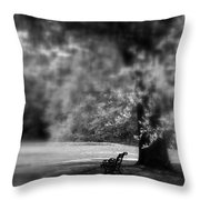 The Bench In The Park Throw Pillow