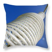 The Big Bottle Throw Pillow