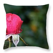 The Big Rain Drop Throw Pillow
