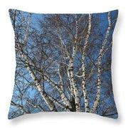 The Birch Throw Pillow