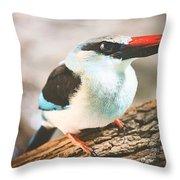 The Bird Knows Throw Pillow