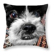 The Black And White Dog Throw Pillow