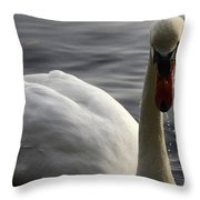 The Bold Approach Throw Pillow