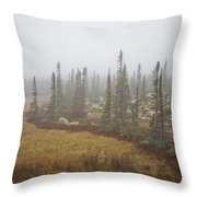 The Boreal Forest On A Foggy Day Throw Pillow