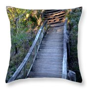 The Bridge Path Throw Pillow