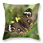 The Buckeye  Throw Pillow