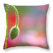The Bud Of A Wildflower In Columbia Throw Pillow