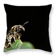 The Bug Throw Pillow