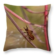 The Bug With Fireweed Seeds Throw Pillow
