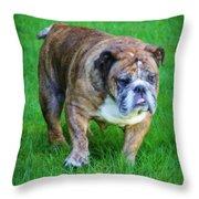 The Bulldog Shuffle Throw Pillow