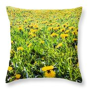 The Burren, County Clare, Ireland Field Throw Pillow