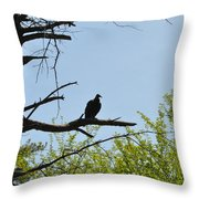 The Buzzard Is Two Faced Throw Pillow