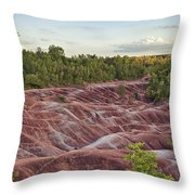 The Cheltenham Badlands Throw Pillow