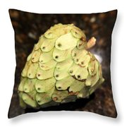 The Cherimoya Throw Pillow by Enzie Shahmiri