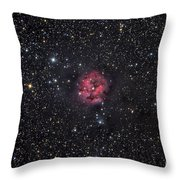 The Cocoon Nebula Throw Pillow by Roth Ritter