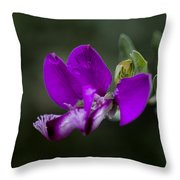 The Color Purple V2 Throw Pillow