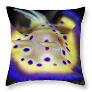 The Colorful Chromodoris Kuniei Throw Pillow