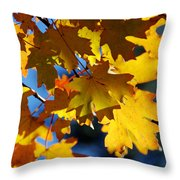 The Colors Of Autumn In Arizona  Throw Pillow