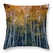 The Colors Of Fall II Throw Pillow