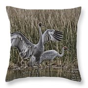 The Conductor V2 Throw Pillow
