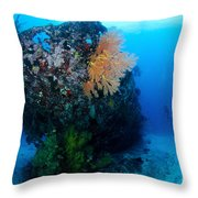 The Coral Encrusted Stern Throw Pillow