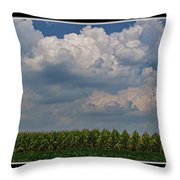The Corn Is Thirsty Throw Pillow