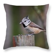 The Crested Tit Having Lunch Throw Pillow