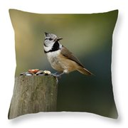 The Crested Tit Throw Pillow