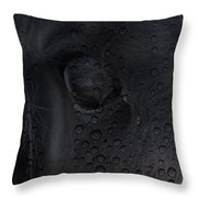 The Crying Horse  Throw Pillow